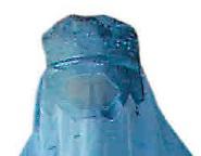 Mittelhessen-Presse: Beitrag über Burka (10.06.2011)